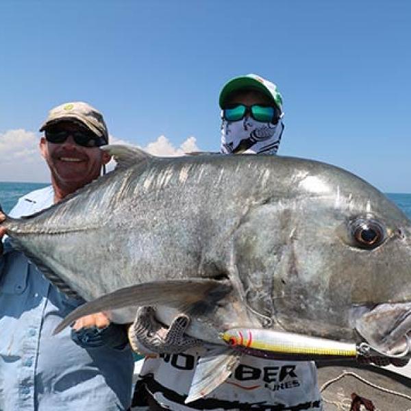 big GT fish